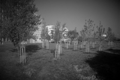 galerie-prubeh-praci-062