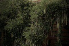galerie-realizovane-zahrady-12-scaled