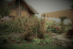 galerie-realizovane-zahrady-14