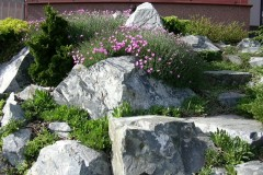 galerie-realizovane-zahrady-25