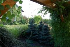 galerie-realizovane-zahrady-37