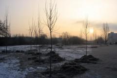 galerie-realizovane-zahrady-45